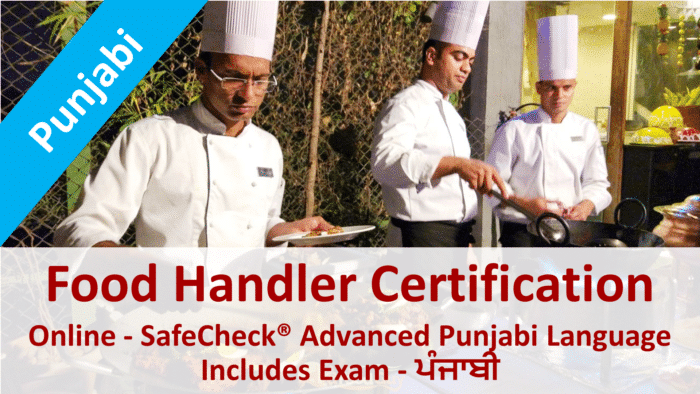 Picture of The SafeCheck Punjabi Language Food Handler Course Start Page