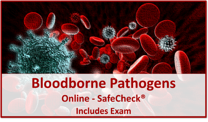 Bloodborne Pathogens Awareness